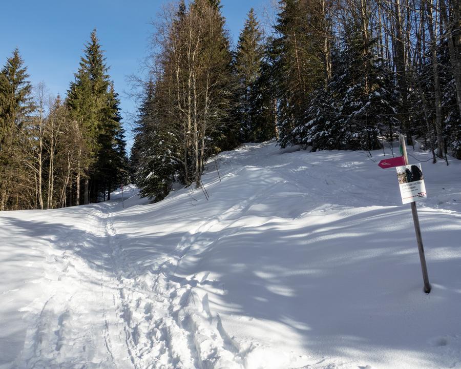 SS_818-Furggelen-Schneeschuhtrail-1160081_M.jpg