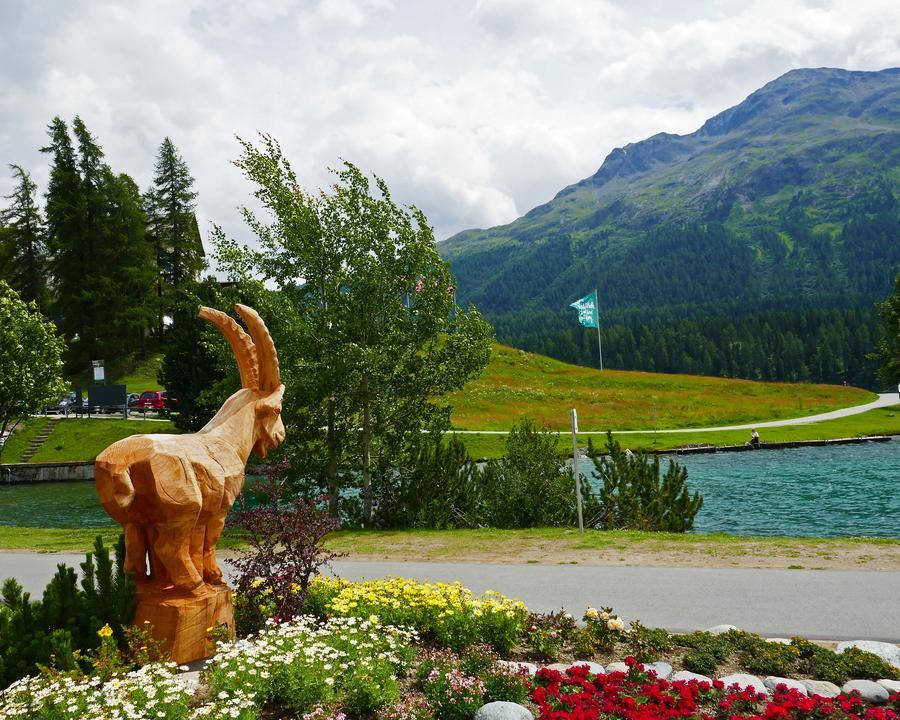 WL_033_07_01_St_Moritz_M.jpg