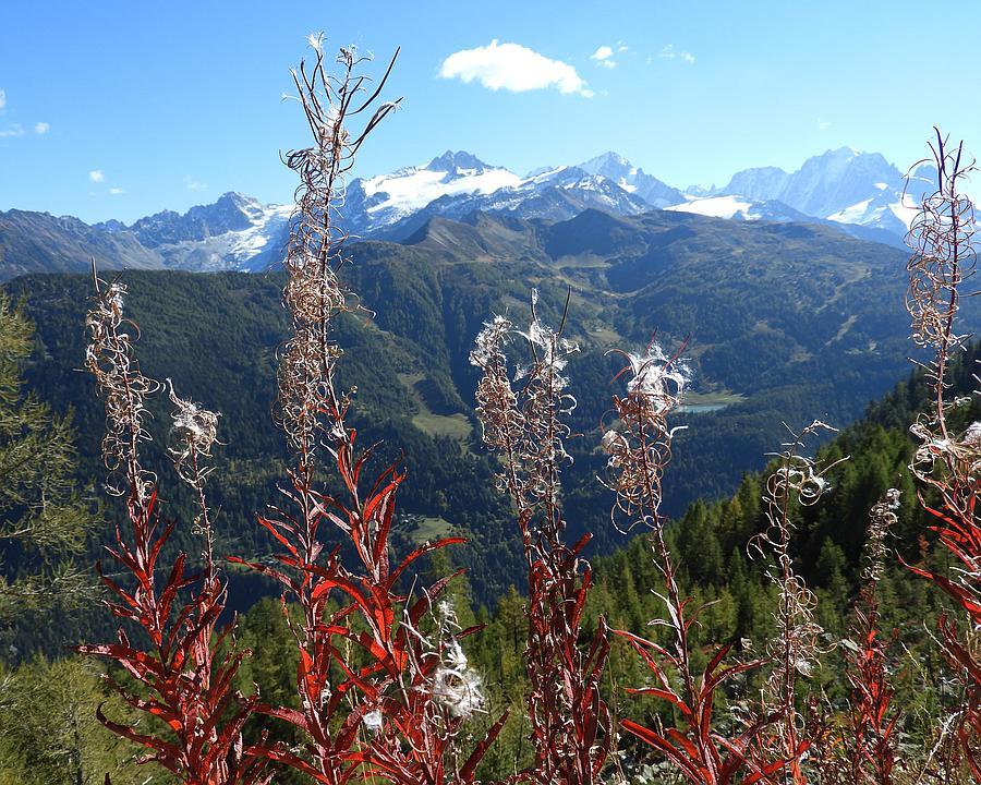 WL_218_Le_Balcon_du_Mont_Blanc_1_CopyrightVTTSA__F_M.jpg