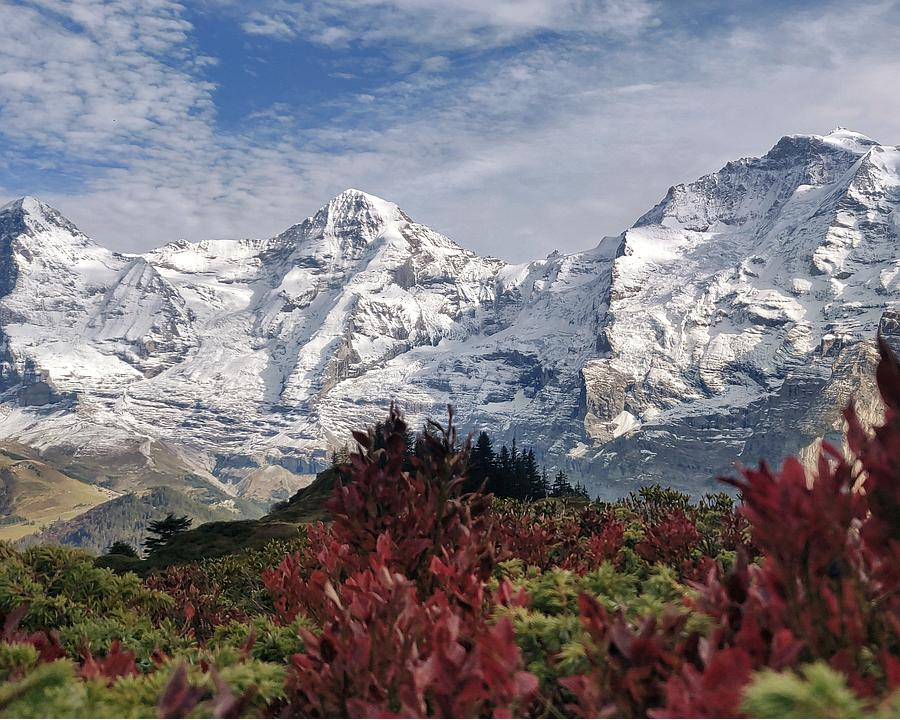 WL_351_Mountain_View_Trail_10_Mountain_View_Trail_Eiger_Moench_Jungfrau_Herbst_M.jpg