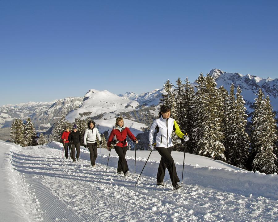 WW_502_Winterwandern_Klewenalp_Aengi_Stockhuette_Weg_9_M