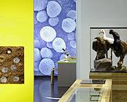 Bündner Naturmuseum