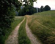 Willisauer Landstrasse