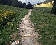 Splügensaumweg