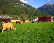 Bauernhof Puntetta