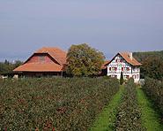 Bauernhof Gessenrüti
