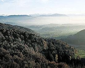 Wildnispark Zurich Sihlwald