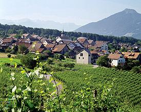 Fläsch – award winning village