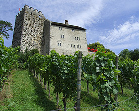 Castello di Habsburg
