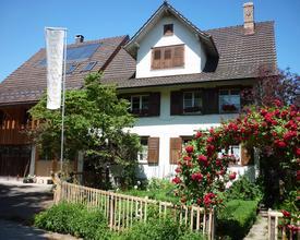 Strohhotel Bodensee