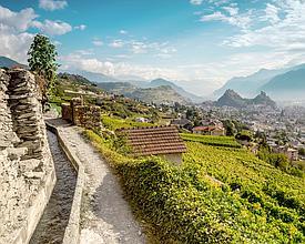 36 Walliser Weinweg
