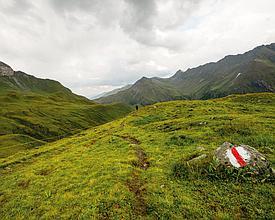 1 Via Alpina Svizzera orientale