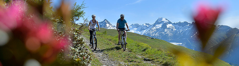 770 Gämschfax Bike
