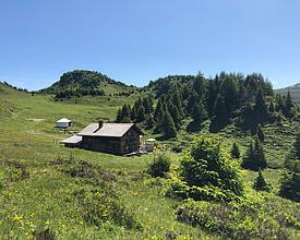Skihütte + Jurte Feldis