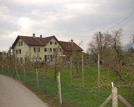 Dorfengrabenhof