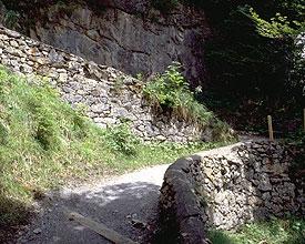 Rüti–Braunwald