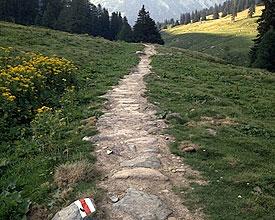Splügen Pass trade route