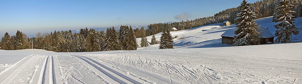 122 Panoramaloipe Langenegg-Bensol