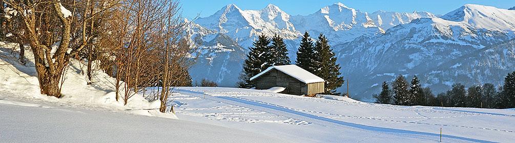 Waldegg-Bodenalp-Loipe