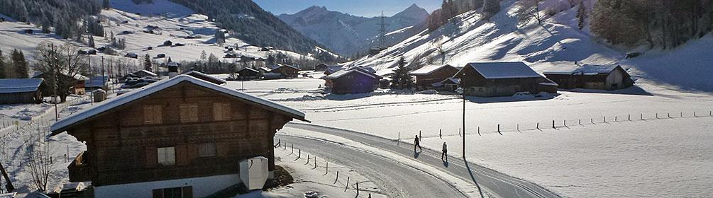 173 Gstaad-Gsteig-Loipe
