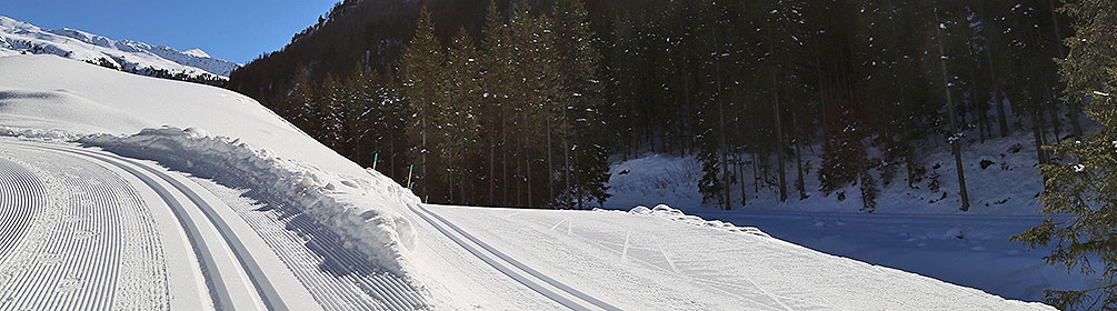 243 Davos-Weltcuploipe