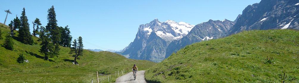 1 Alpine Bike