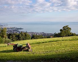 Panorama Bike