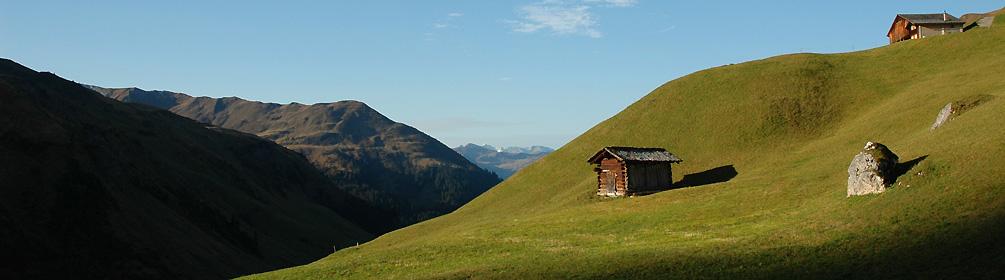 323 Alp Valpun