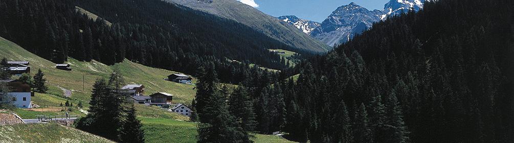 337 Davoser Taltour