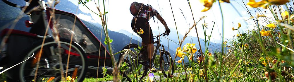 402 Talboden Bike