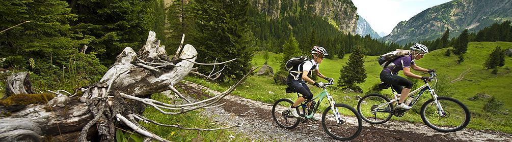 403 Isenthal Bike