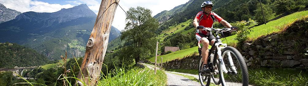 406 Oberland Bike