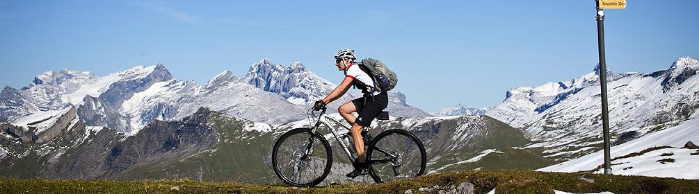 417 Chinzig Bike