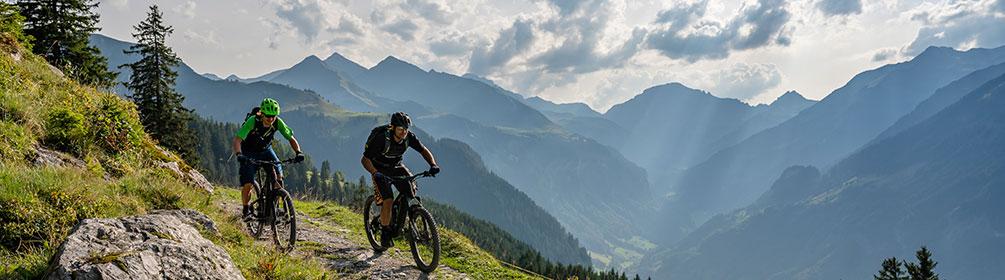 471 Alp Gamidaur Bike