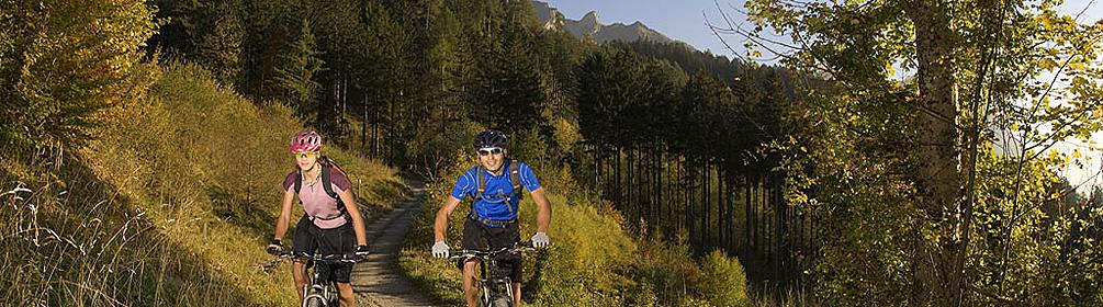 48 Rheintal Bike