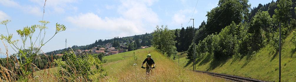 746 Les Vieux-Pres Bike