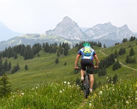 Hoch-Ybrig Bike