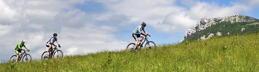 987 Chasseron Bike