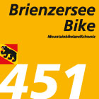 Brienzersee Bike