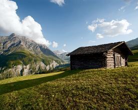 Naturpark_Beverin_4557_Safierstall_Camana_M.jpg