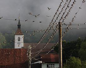 Orte_Glovelier_Listenbild