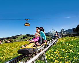 Kronberg: Piste de bob, parc tyroliennes et Märliwelt