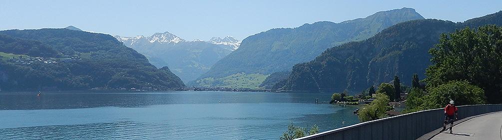 66 Zentralschweiz Skate