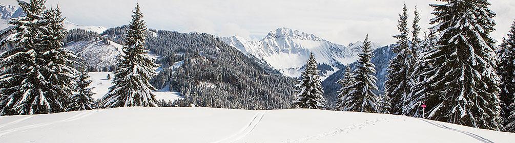 267 Parcours La Cierne au Bocliou–Corbetta