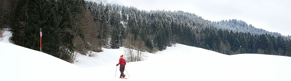 274 Oberbach Trail