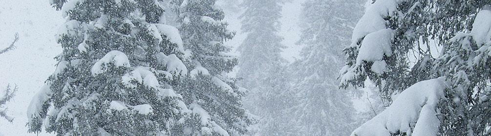 454 Parcours Col du Mollendruz–La Bréguettaz