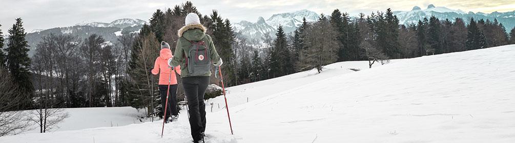457 Parcours du Mont-Pèlerin