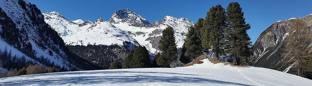 Palpuogna-Schneeschuhtrail