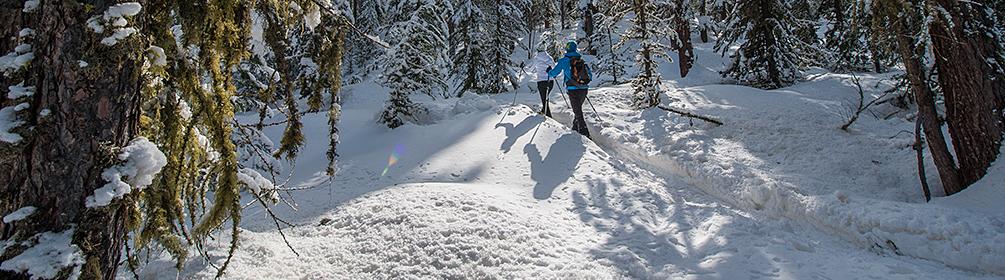 564 Celerina-Pontresina-Schneeschuhtrail