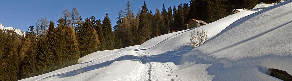 591 Panell-Schneeschuhtrail
